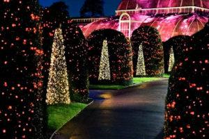 Royal gardens