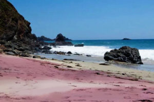 Beach Pfeiffer