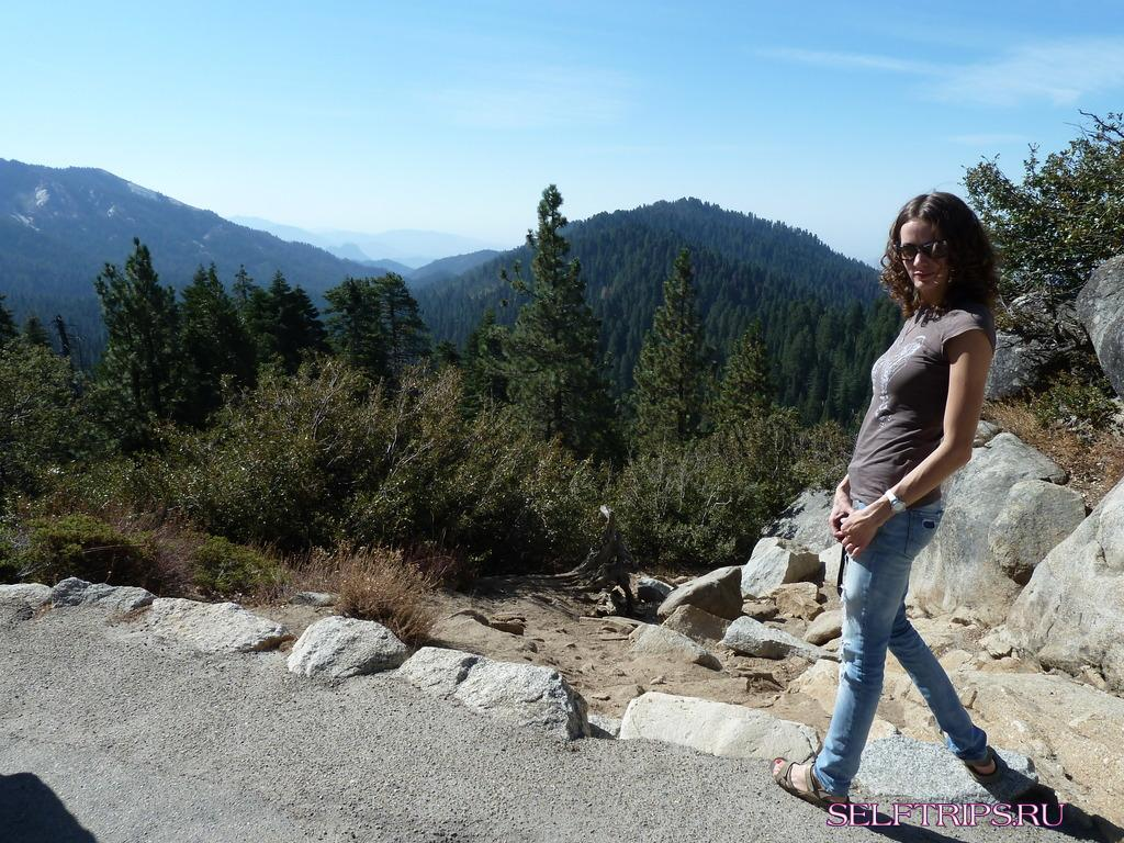 День 7: Sequoia National Park - Kings canyon park.