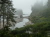 День 11: Olympic National Park - Seattle - Microsoft