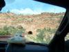 День 17: Bryce Canyon - Zaion national park - Las Vegas