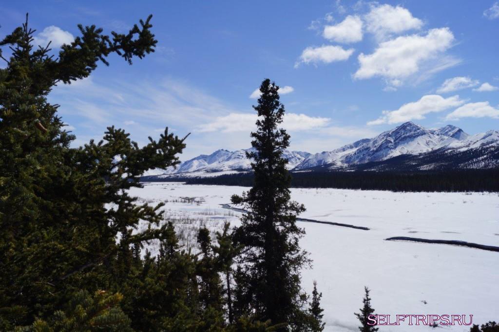 Полукругосветка: День 17, Гора Mckinley - парк Denali - Chena hot spring. Великолепная Аляска, горы, лоси.
