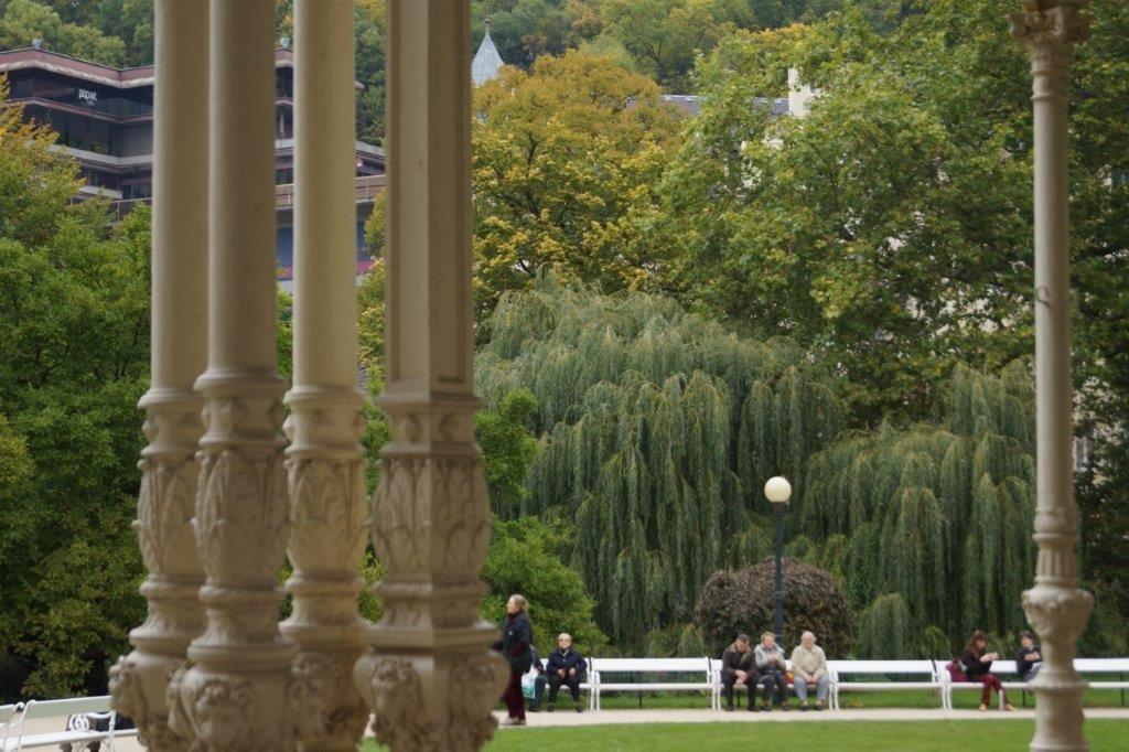 Dvorakovy garden