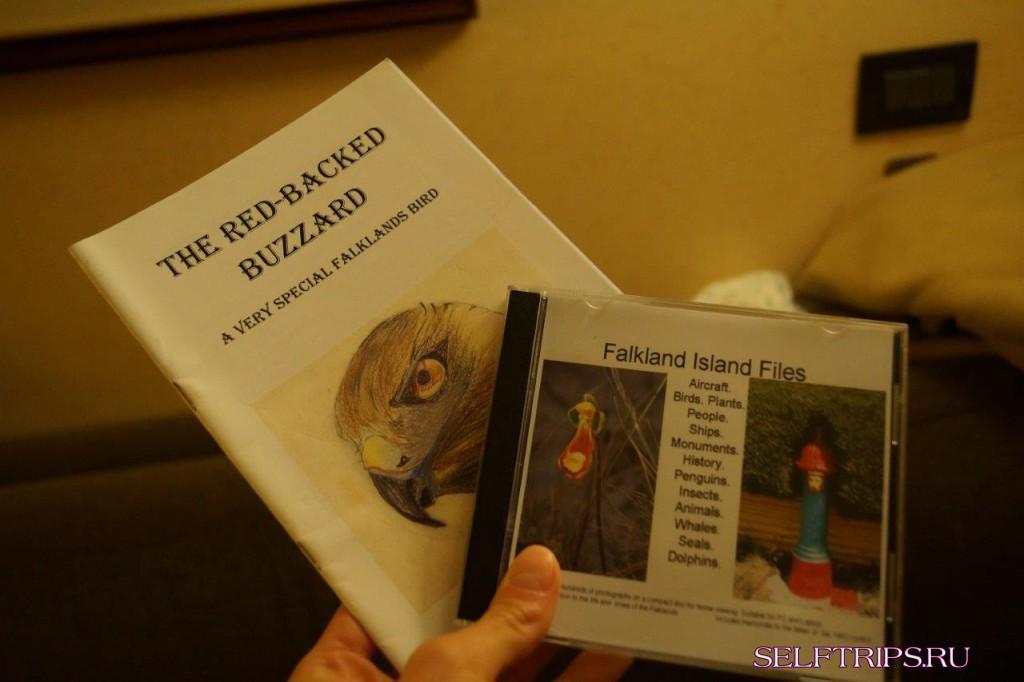 Фолкленды, королевские пингвины!