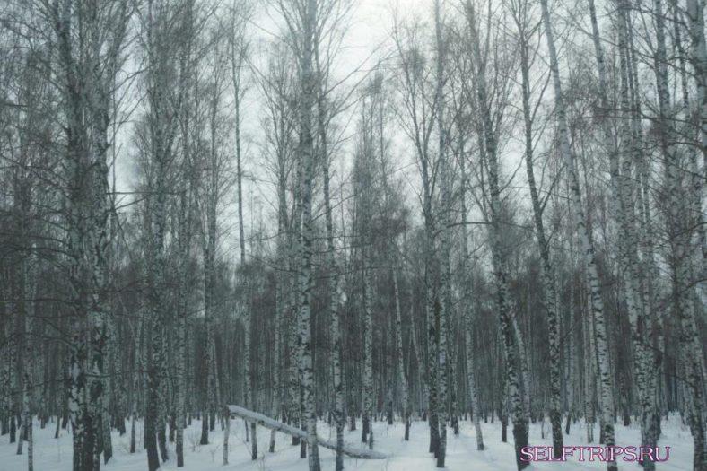 Нижний Новгород - Набережные Челны