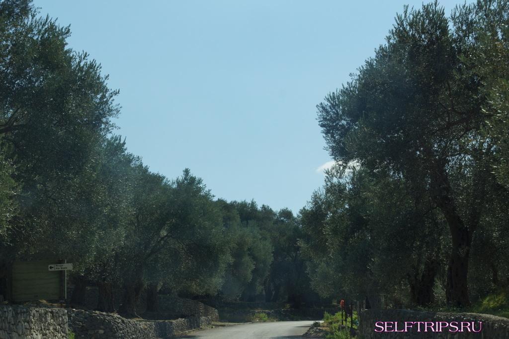 День 37: Продолжаем исследовать берег Черногории. Сегодня Добра Вода! В Европу на машине-2