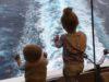 День 3: В море! Немного про круизную жизнь. Восточное США и Карибы!