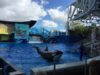 День 35: Как мы с Владой сходили в SeaWorld! Восточное США и Карибы!