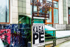 Stray dog Novosibirsk