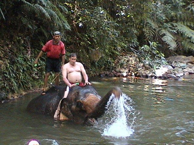 Купание со слонами, Ко Чанг, Таиланд