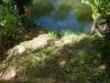 Остров лемуров