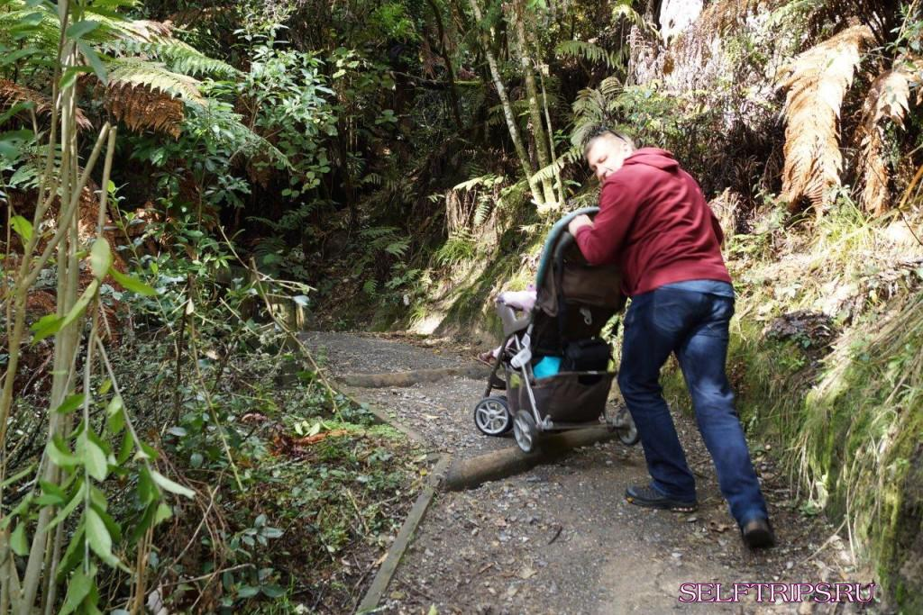 Термальные парки Новой Зеландии
