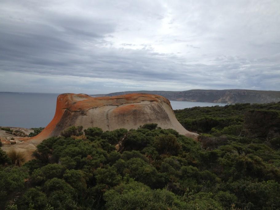 Остров Кенгуру