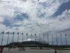 Сочи: Набережная, Олимпийский Парк, Красная Поляна